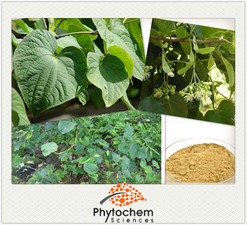 Kava Extract with active ingredients 30% Kavalactones