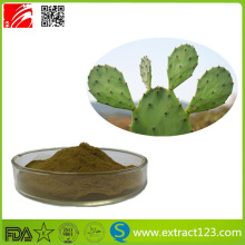 Natural Cactus Extract