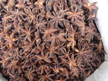 New Crop Dried Star anise seeds