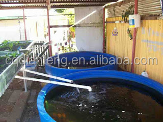 1500liter plastic culture pond plastic blue aquaponics grow bed large Square box fish tank Hot Water Tank Price