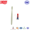 Hotel Amenity Travel Toothbrush Disposable Mini Amei Toothpaste