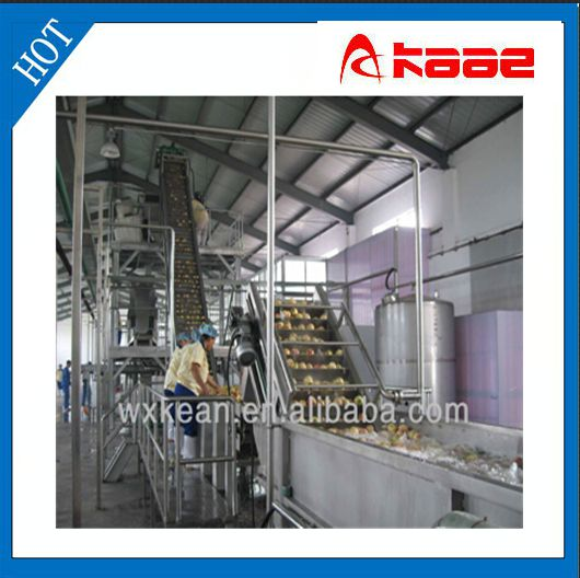 Most professional industrial fruit and vegetable washer