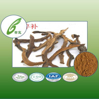 herbal medicine Fortune's Drynaria Rhizome extract Natural Anti osteoporosis