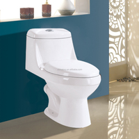 custom color toilets,sanitary ware manufacturer,cera toilet price