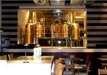 500L ss304 or red copper vodka distillery for sale