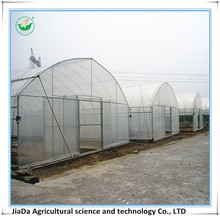 Professional transparency agriculture farm green house