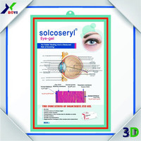 Plastic Quality Embossed Medical Posters