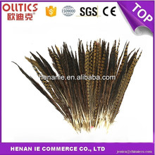 Manufacturers can dyed pheasant feathers feather material craft feathers wholesale