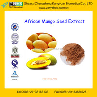 GMP Factory Supply Mango Seed Extract