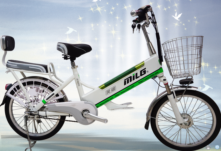 Removable lithium battery 20inch two seats light electric bicycle charging at home for lady