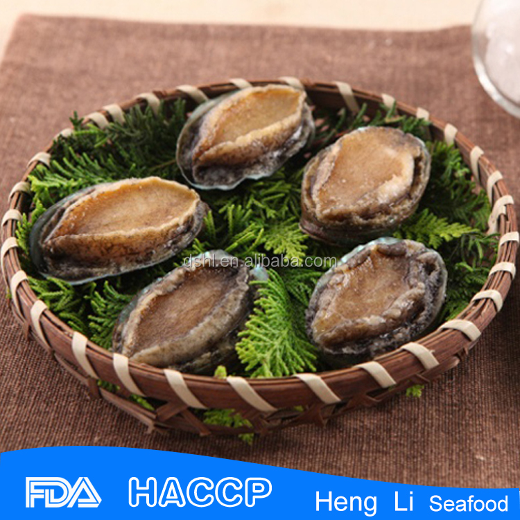 Fresh fresh frozen abalone paua whole