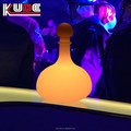 led decorative bar illuminated LED lighting rechargeable battery Plato Wine bottle