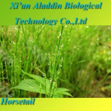 100% Natural Herb Horsetail Extract Silica 7%