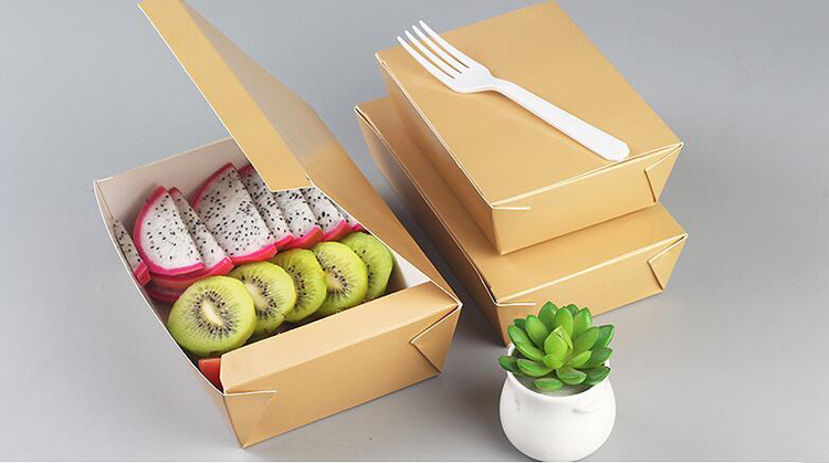 Take out lunch box for packaging