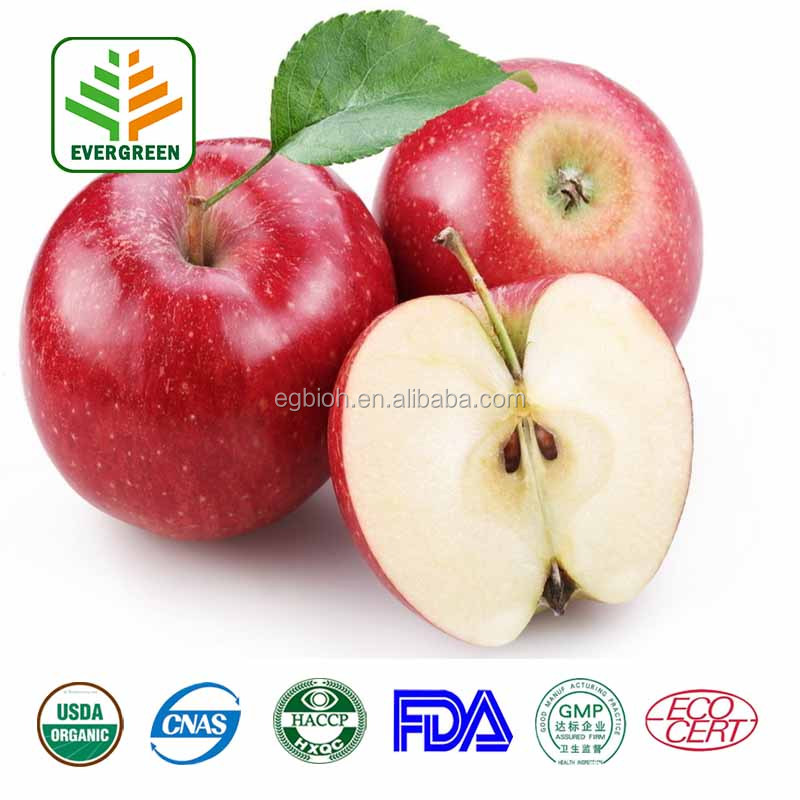 Bulk Natural Apple Fruit Extract For Anti-oxidant
