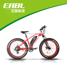 "26"" Electric Bicycle/E-Bicycle/48V 500W electric mountain bike bycicle"