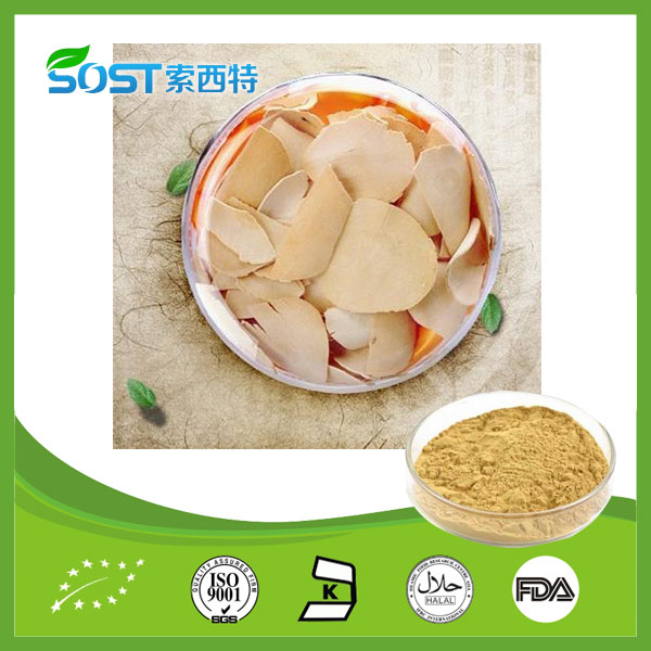 High Quality Factory Supply Tongkat Ali Root Extract 200 :1