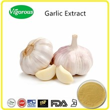 Manufacturer supply garlic extract/Allium sativum powder/High quality garlic extract powder