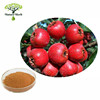 Nature Herb Supply Hawthorn Leaf Extract
