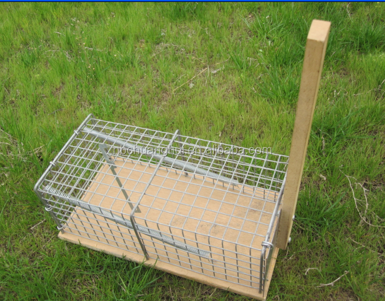 new premium Veterianary Wire Mesh Wooden Base Mouse Trap in farming equipment