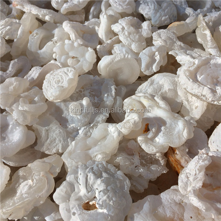 Natural White Agate Geode Wholesale