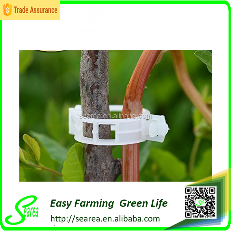 Commercial Terracotta Twine Clips for Vegetable Growing,tomato clips