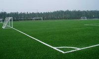 fifa licencees artificial football grass manufacturer