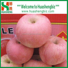 Best Quality Chinese fresh fuji apple/red apple/fresh apples