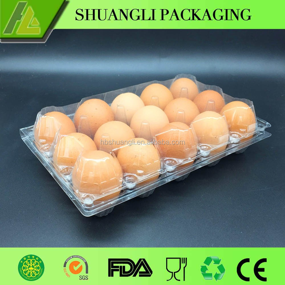 12 Cell Clear Plastic Chicken Egg Carton with Folding Top Package of 10