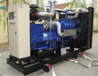10kW-400kW biomass/syngas/wood gas generator set with DEUTZ/MWM/MAN/STEYR engine ( chp&canopy)