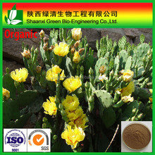 GMP&FDA Approved Natural Red Cactus plant Extract, Cactus Tree Extract Powder 10:1