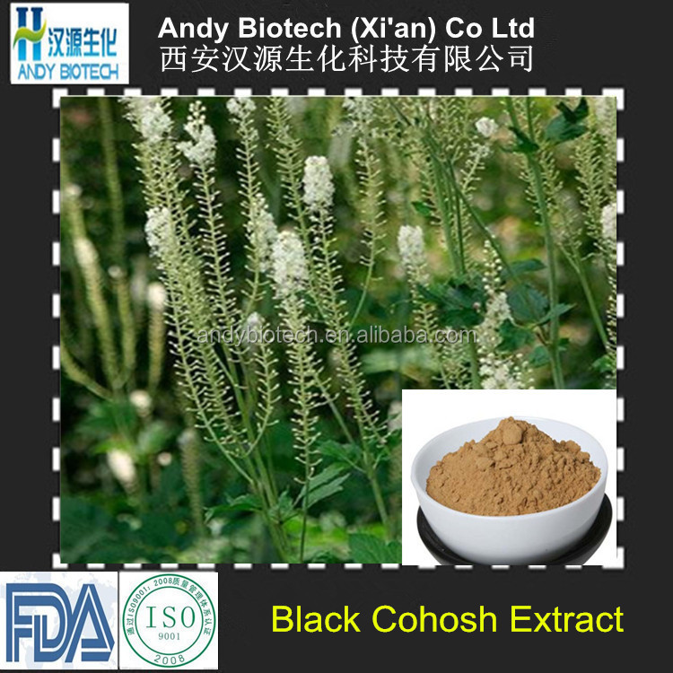 Large Stock 5:1 Pure Black Cohosh Root Extract
