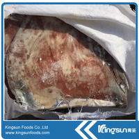 Frozen Giant Squid Wing with good price