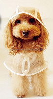 Fashion High-grade Transparent Waterproof Dog Raincoat Cape-style Teddy poncho Free shipping