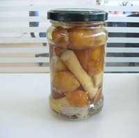 canned stropia(canned mushroom-canned vegetable)