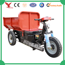 Enclosed Motor Tricycle Toktok/Electric Adult Tricycle
