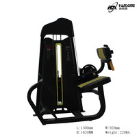 Gym Equipment Fitness Machine Back Extension