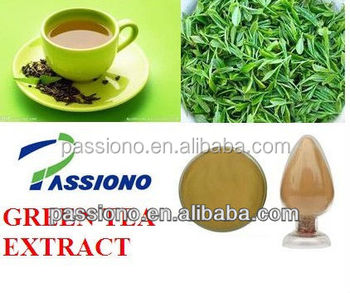 Lowest price in China! The very best price Green Tea Extract 30% polyphenols / Green Tea Extract 45 EGCG