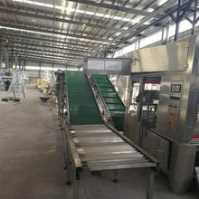 non-slip fixed belt conveyor equipment