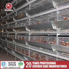 H type hot galvanized chicken layer chicken cage for poultry farm for nigeria