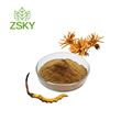 GMP Factory Supply High Quality Cordyceps Sinensis Extract Polysaccharides