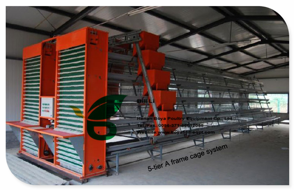 hot sale layer poultry cage 96 Capacity in Philippines market