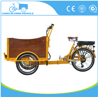 pedal three wheel tricycle/electric cargo bike