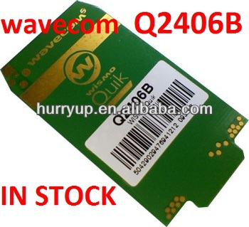 Wavecom wireless Q2406B GSM/GPRS module