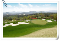 artificial turf for golf/BEST PRICE/HOT SALE