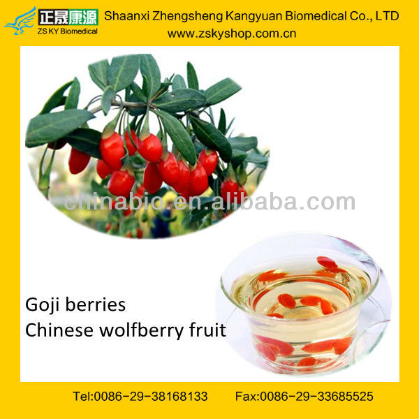 GMP manufacturer supply 100% natural Goji/ Medlar/ Ningxia Wolfberry