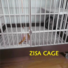 New product !cheap price Beautiful cat crates houses