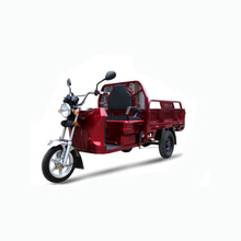 Three wheeled cargo electric scooter