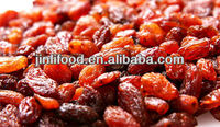hot raisin chinese red raisin,sultana raisin