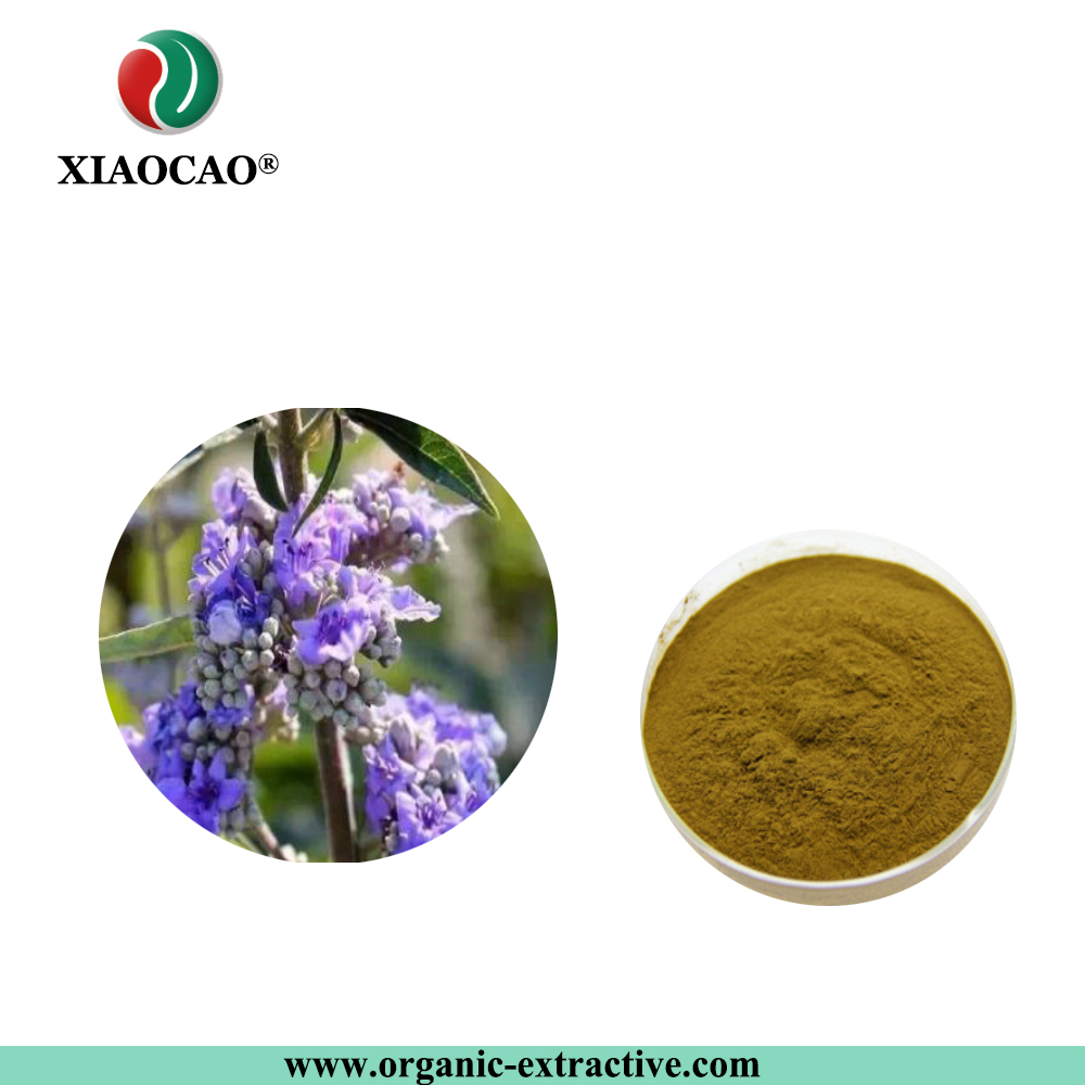 Hot sale Chasteberry extract powder,Vitex agnus-castus extract,Holy blackberry extract powder,5% 25%